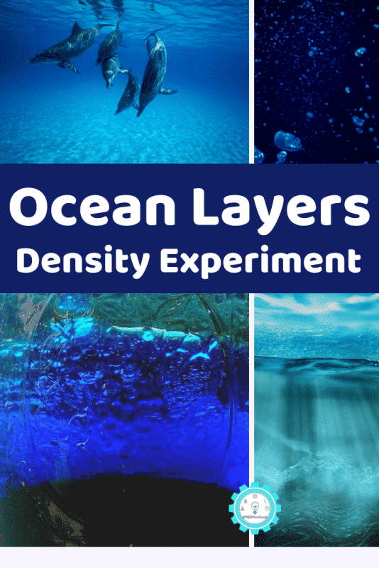 Learn about the layers of the ocean with this ocean layer liquid density experiment! Just 3 ingredients and takes less than 10 minutes!