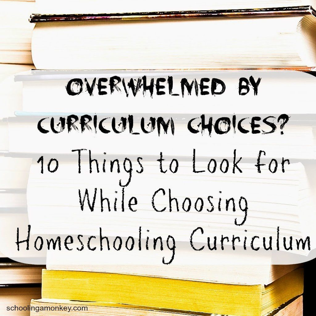 10 Things to Look for While Choosing Homeschooling Curriculum