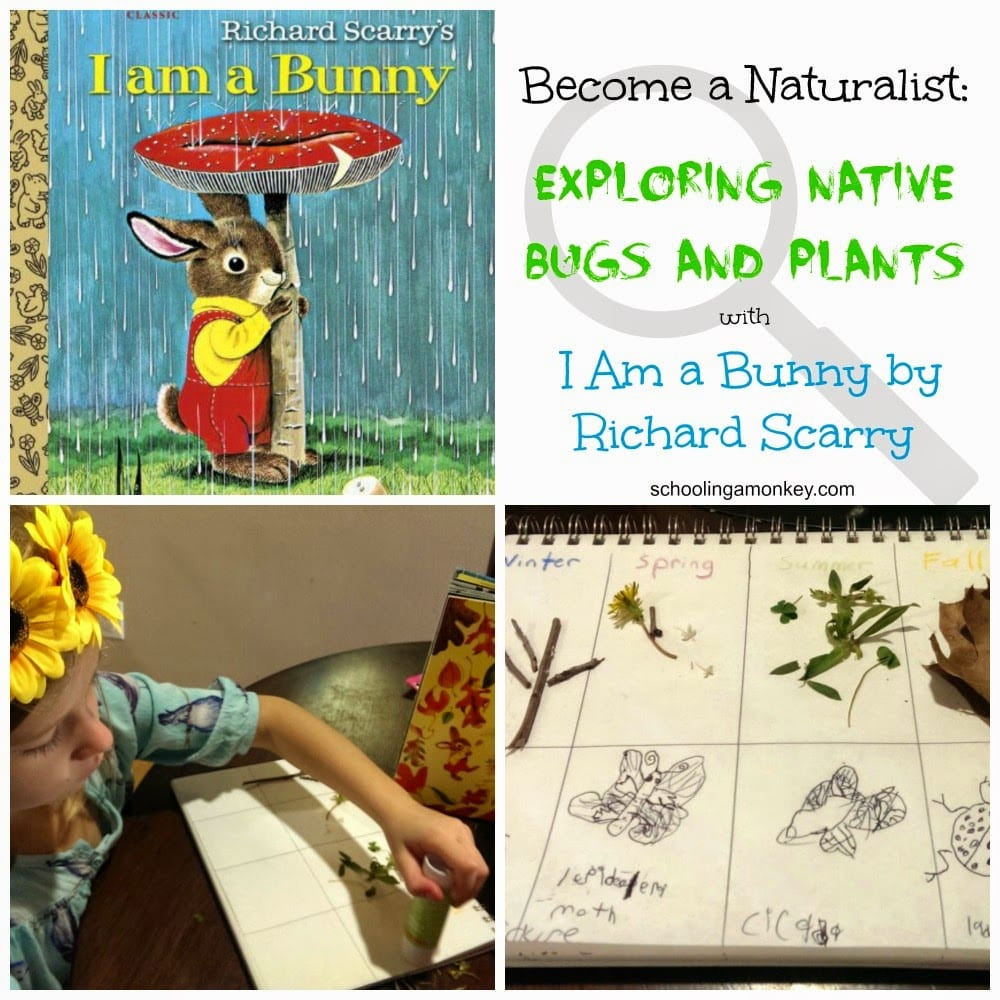 Love bugs? Love bunnies? Then you won't want to miss these I Am a Bunny unit study ideas exploring native bugs and plants! This free unit study is all-ages.