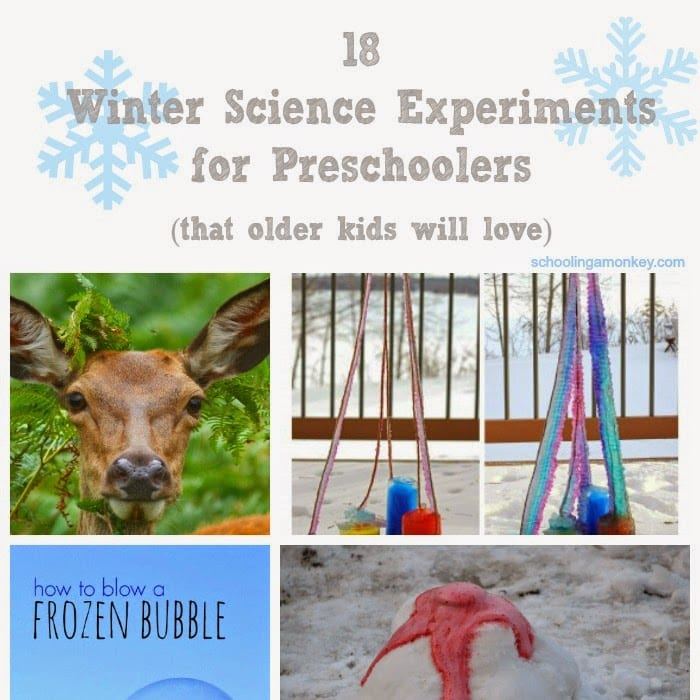 18 Winter Science Experiments for Preschoolers