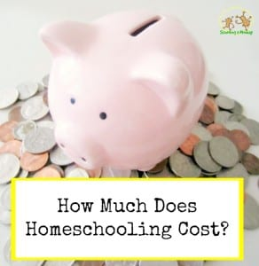 If you are new to homeschooling, you probably wonder, how much does homeschooling cost? This post offers tips on how to plan your homeschooling budget.