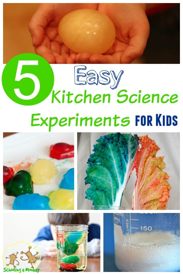 Science experiments don't have to be hard! These kitchen science experiments for kids are easy and require no special supplies!