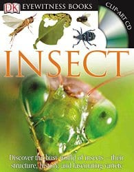 Want a fun way to learn about insects and bugs? These 21 activities will keep you busy learning for a long time!