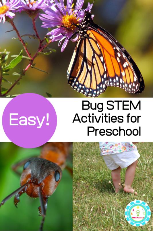 bug activities for preschoolers