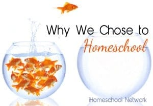 There are many reasons to homeschool, but not all are religious. Here are 7 non-religious reasons why homeschooling is awesome.