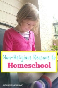 7 Non-Religious Reasons to Homeschool