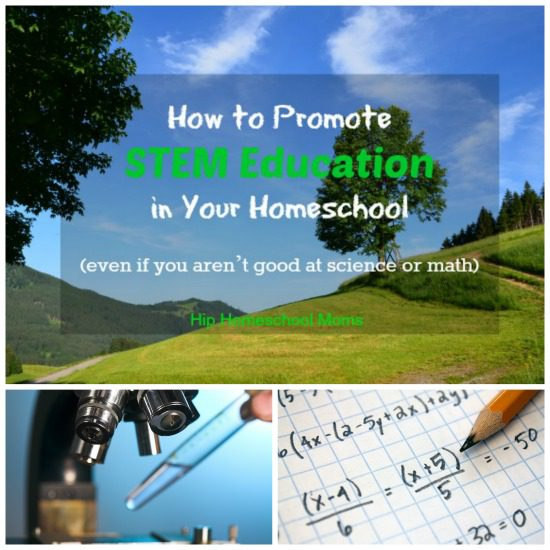 Use these tips to add a little more STEM education to your homeschool day.