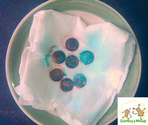 Want an easy and educational activity? Turning a penny green is a fun science experiment that kids of all ages enjoy!