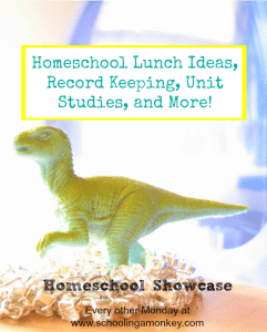 Look to next year and keep the summer fun with this edition of the Homeschool Showcase offering practical tips and advice to homeschooling families.