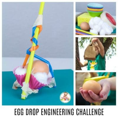 THE BEST STEM ACTIVITY: EGG DROP ENGINEERING CHALLENGE