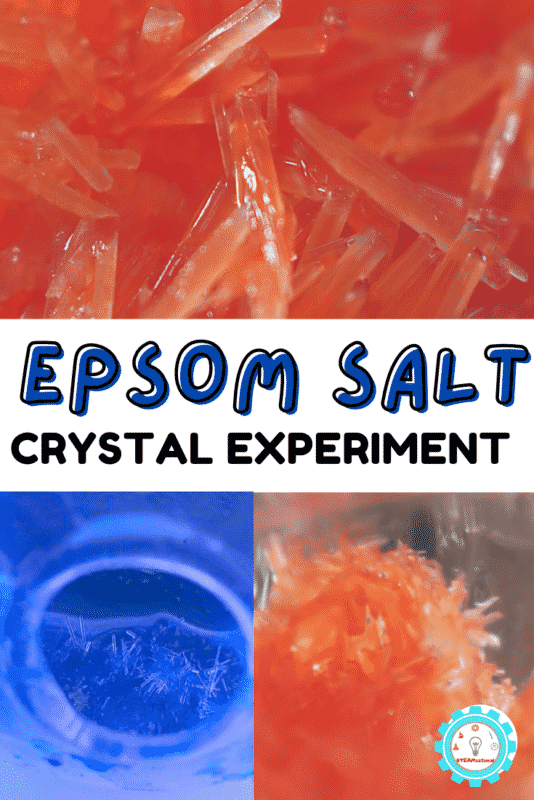 Epsom salt crystals are a classic experiment everyone should try at least once! Use this tutorial to learn how to make epsom salt crystals.