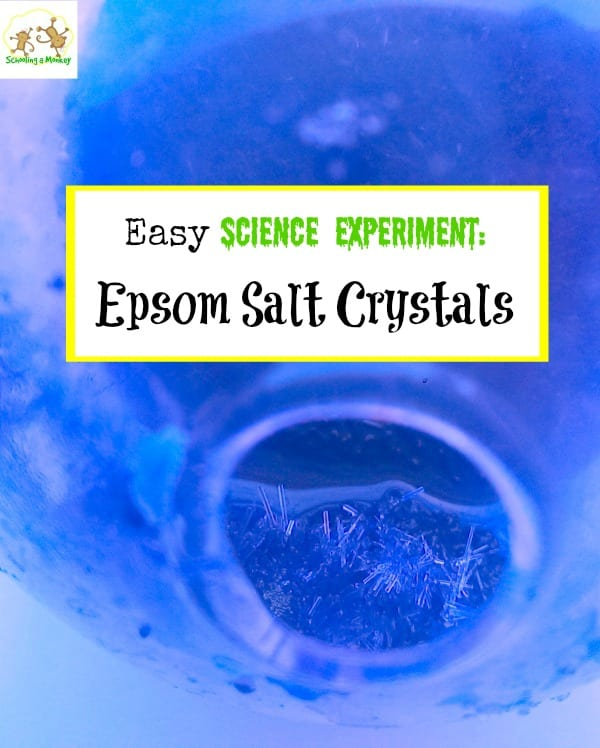 Looking for easy science experiments for kids? These Epsom salt crystals are so easy to make and kids love inspecting the salt crystals.