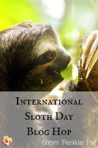 Celebrating International Sloth Day? These easy sloth crafts for preschool are the perfect way to celebrate with this mess-free chenille stem sloth!