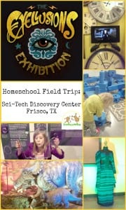 Homeschool Field Trip: The Eyellusions Exhibit at the Frisco Sci-Tech Discover Center