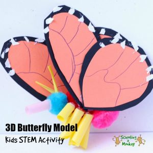Butterfly Science: 3D Monarch Butterfly Model