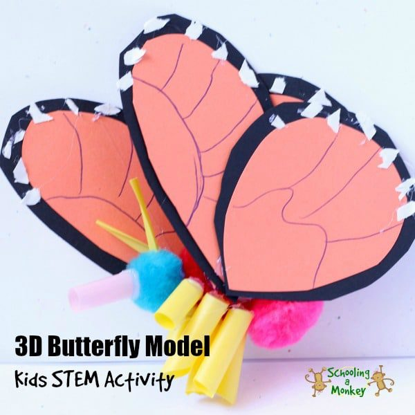 3D MONARCH BUTTERFLY MODEL SCIENCE EXPERIMENT FOR KIDS