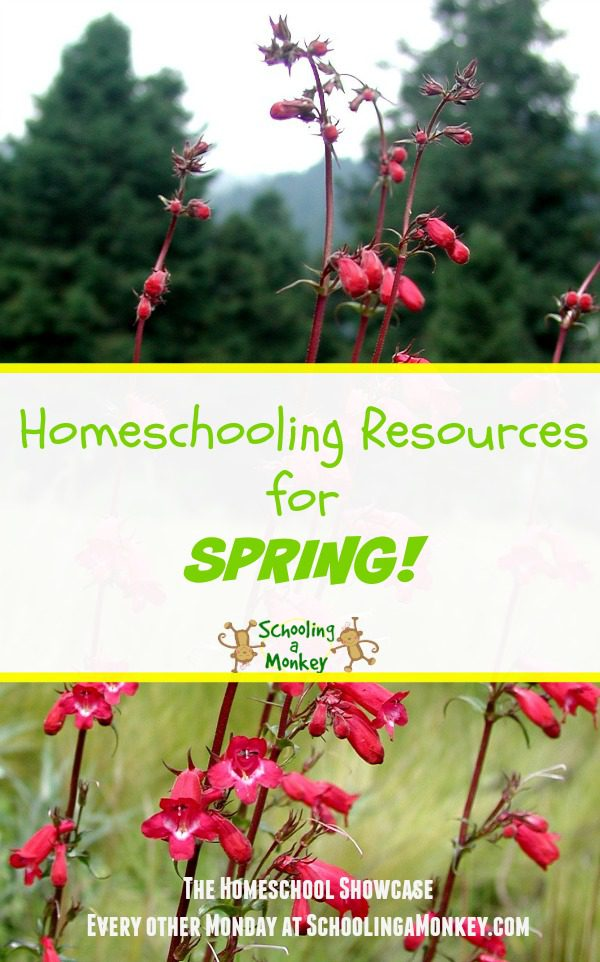 Want to add a little spring to your homeschool? Use these spring homeschooling resources to bring a little seasonal fun to your daily grind.