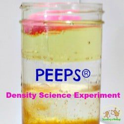 PEEPS Density Science Experiment