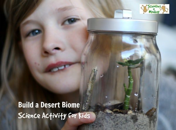 Build a Desert Biome