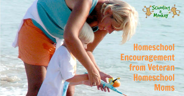 I always feel in need of a bit of homeschool encouragement this time of year, and these veteran homeschool moms have some excellent insights!