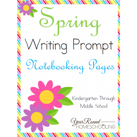 year-round-homeschooling_cover_9dfe