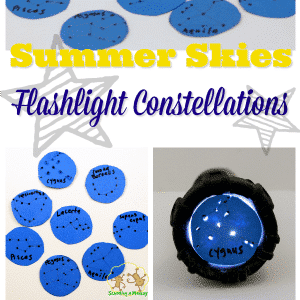 Summer Skies Flashlight Constellations