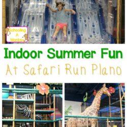 Dallas Indoor Activity Ideas: Safari Run Plano