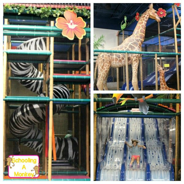 Looking for indoor summer activity ideas in Dallas? Check out the healthy fun offered at Safari Run! I found the fun at Safari Run Plano!