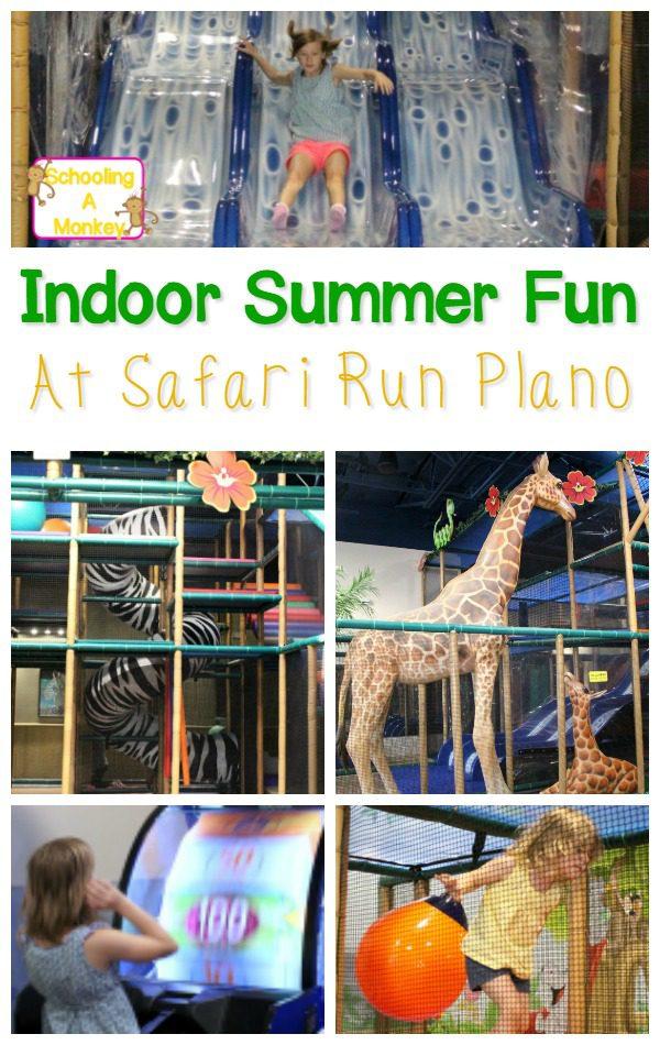 Safari Run Plano >> Dallas Indoor Activity Ideas Safari Run Plano