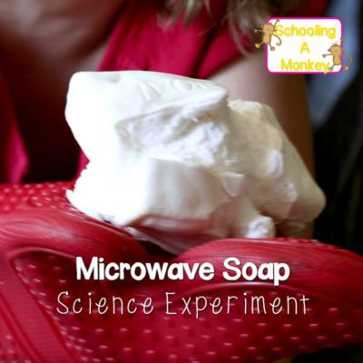 Easy Ivory Soap Science Experiments