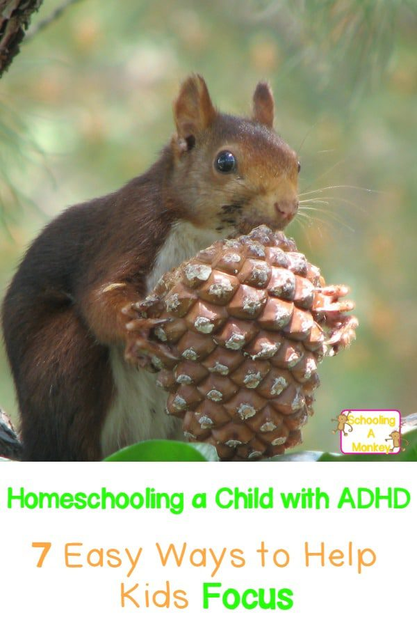 Homeschooling a child with ADHD? These simple, effective tips will make it easier to help kids with ADHD focus while homeschooling.