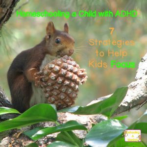 7 Simple Ways to Help Kids with ADHD Focus while Homeschooling