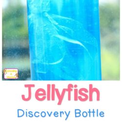 Visit the Ocean at Home! Make Your Own Jellyfish Discovery Bottle