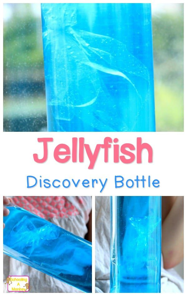 Super lifelike jellyfish in a bottle science experiment! Learn how to make a jellyfish in a bottle with this jellyfish lesson plan.