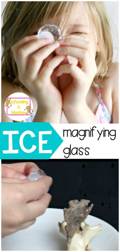 Wondering how to make a magnifying glass? It's easier than you think! This kids science project shows you how to make a magnifying glass from ice!