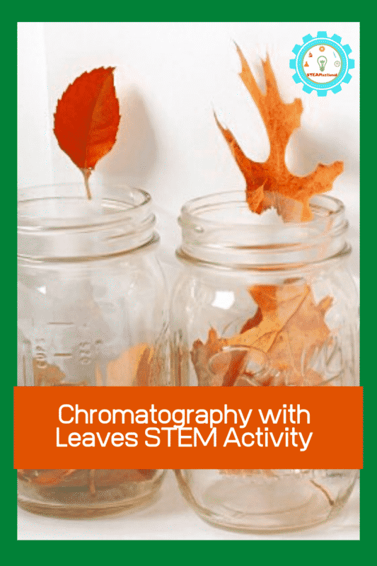 <!-- wp:paragraph --> <p>This<strong>leaf chromatography activity </strong>shows just how many hidden colors there are in fall leaves! </p> <!-- /wp:paragraph -->  <!-- wp:paragraph --> <p>Your kids will have a blast discovering just how brilliant leaves really are in the leaf chromatography experiment. </p> <!-- /wp:paragraph -->