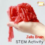Jello Brain Recipe Halloween STEM Activity for Kids (no mold needed!)