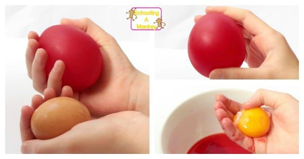 This twist on the classic naked egg science experiment illustrates the concept of osmosis for kids in a fun and surprising way.