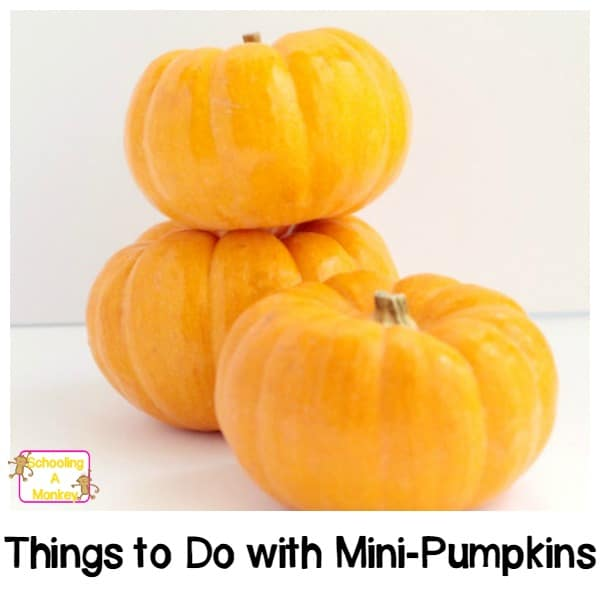 Mini pumpkins are so much more than decorations. These four pumpkin activities for preschoolers will allow preschoolers to safely play with the fall staple.