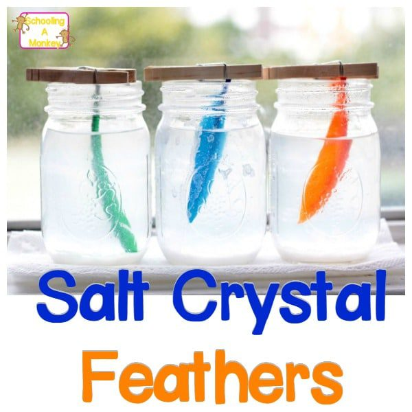 If you're looking for simple science projects, the salt crystal feathers are so much fun! These homemade salt crystals are the perfect salt crystal project and you can learn how to make salt crystals fast for any salt crystals science project.