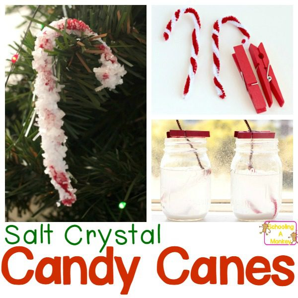 Simple and Fun Salt Crystal Candy Cane Science Experiment