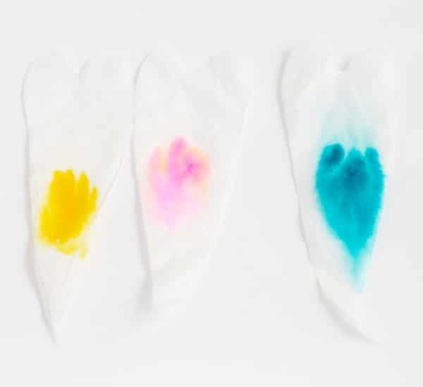 This Valentine's Day, learn all about marker chromatography combined with love when you make these heart-shaped chromatography stripes! Valentine's science!