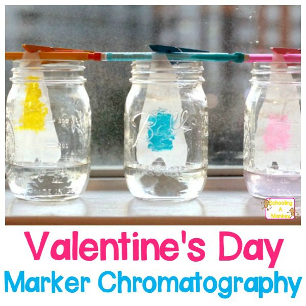 Valentine Heart Chromatography Experiment with Markers!