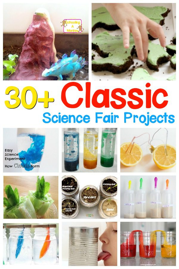These classic science fair projects are perfect science fair projects for elementary school! Find everything from moldy bread to a potato battery and more! Easy elementary science fair projects and classic science projects are just what you need to win the school science fair!