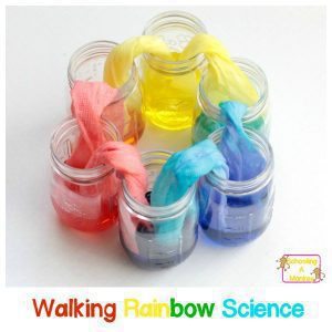 Magic Rainbow Walking Water Science Experiment