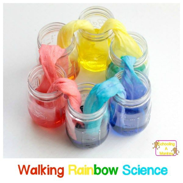 Kids will love making their very own walking rainbow from just three colors. This amazing walking rainbow experiment is the most fun walking water experiment ever! You'll have a blast with the rainbow walking water.