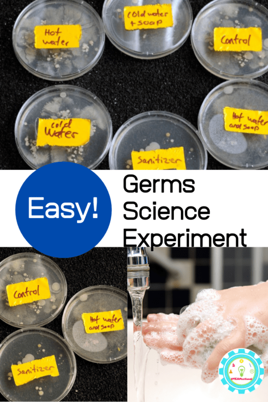 germs science experiment