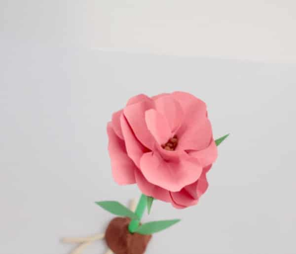 Learn about the parts of a flower with this 3D rose parts of a flower model. Kids will love this hands-on thematic unit about the biology of flowers.