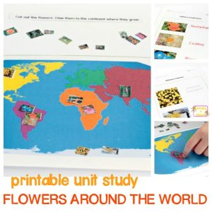 Early Learning Wildflowers Theme: Flowers Around the World Worksheet