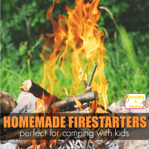 Homemade Firestarters: Camping Unit Study for Older Kids